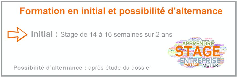 formation initiale alternance